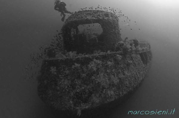 Genepesca wreck