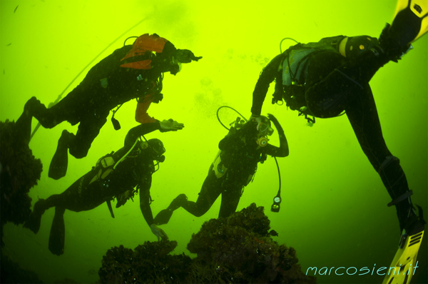 Blind Divers in Paguro Wreck