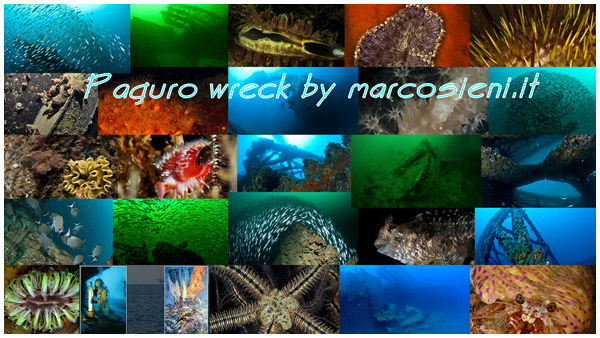 Paguro wreck by marcosieni photo editing