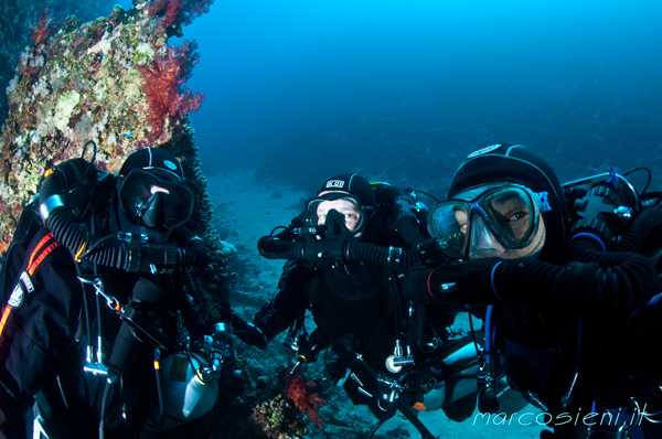 Three scuba friends in Carnatic wreck